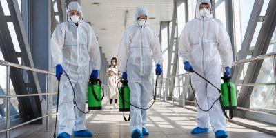 differenza tra disinfezione e disinfestazione
