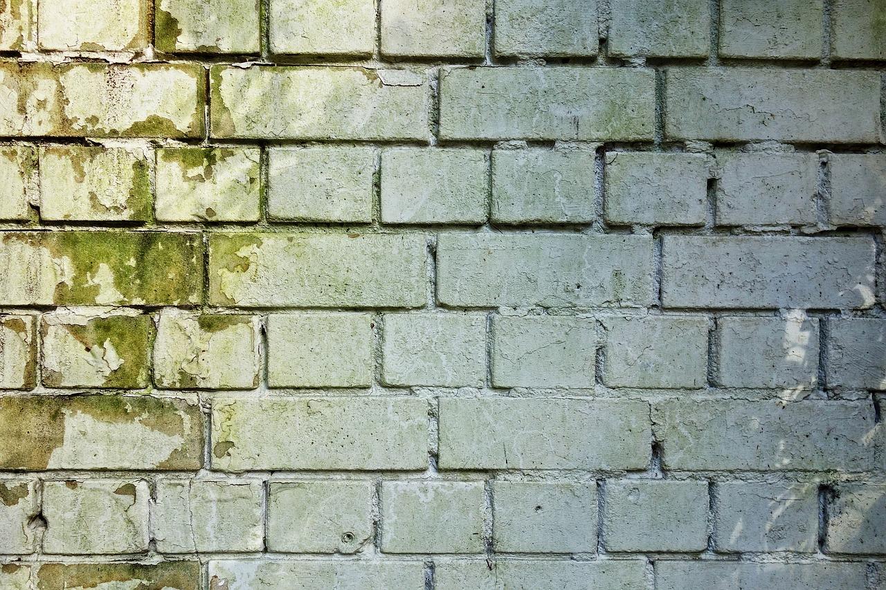 Muro Bagnato Cosa Fare infiltrazioni d'acqua: cause e rimedi per eliminarle