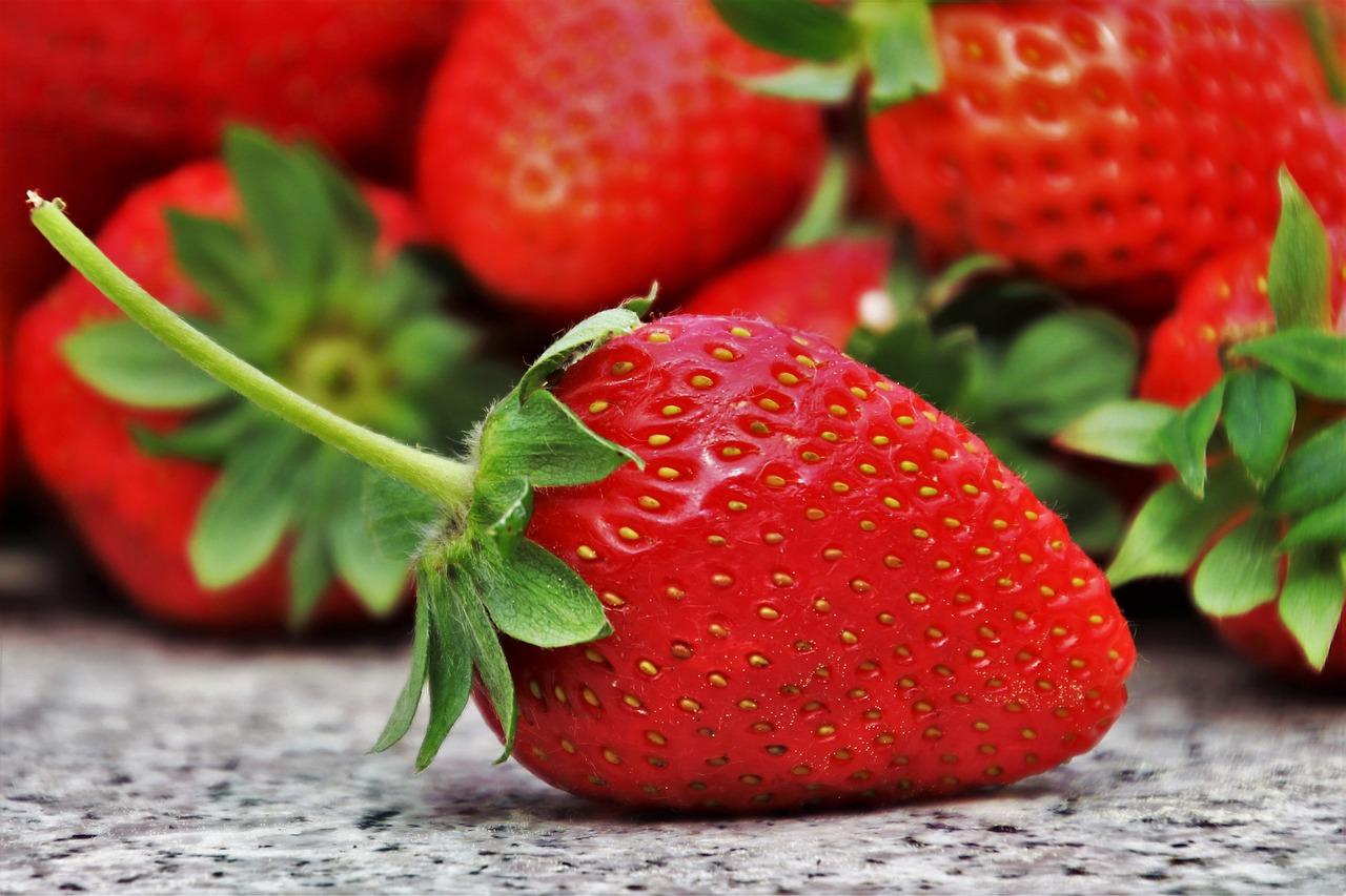Terra Buona Per Giardino come piantare e coltivare le fragole in giardino o sul balcone?