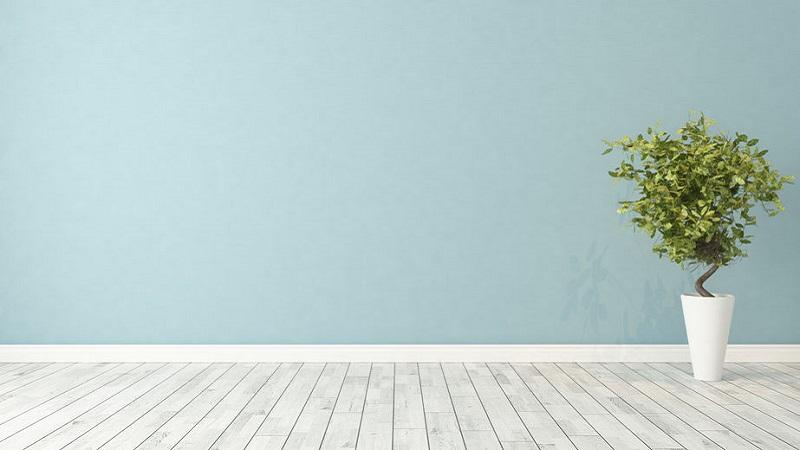 Colore carta da zucchero per pareti: alcuni consigli