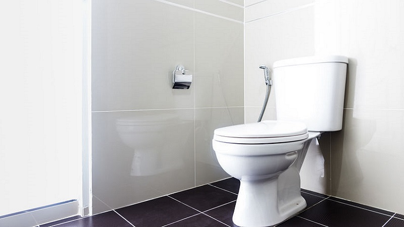 Prodotti chimici per sturare il wc quanto sono efficaci