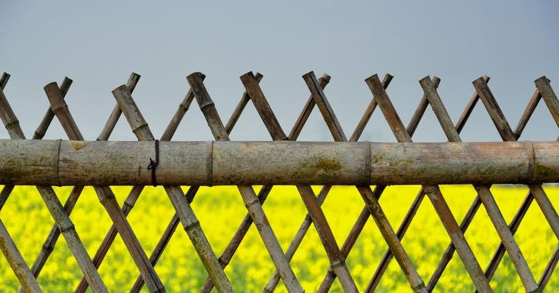Recinzioni Da Giardino Economiche : Recinzioni in bambù pro e contro