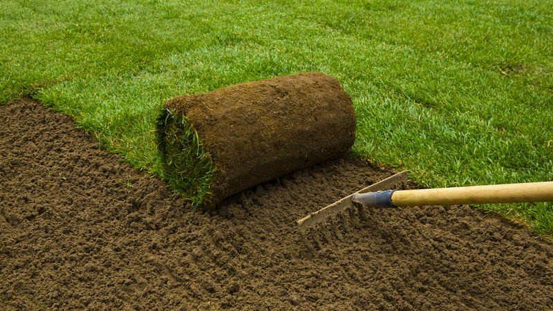 Preparare il terreno per prato a rotoli