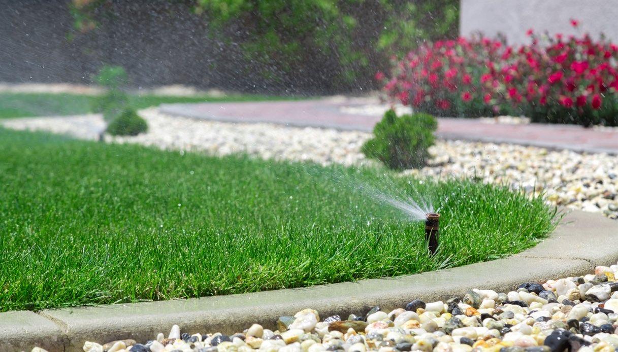 Irrigazione per giardino: quale scegliere?