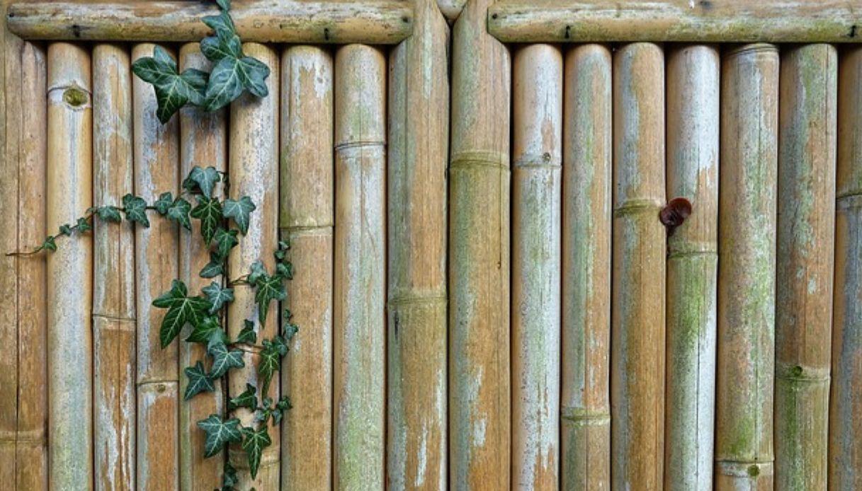 Divisori In Plastica Per Terrazzi pareti mobili per esterno: come sceglierle