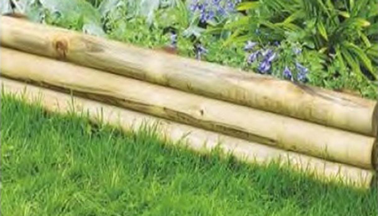 Piante Da Bordura Giardino come scegliere le giuste bordure per il giardino