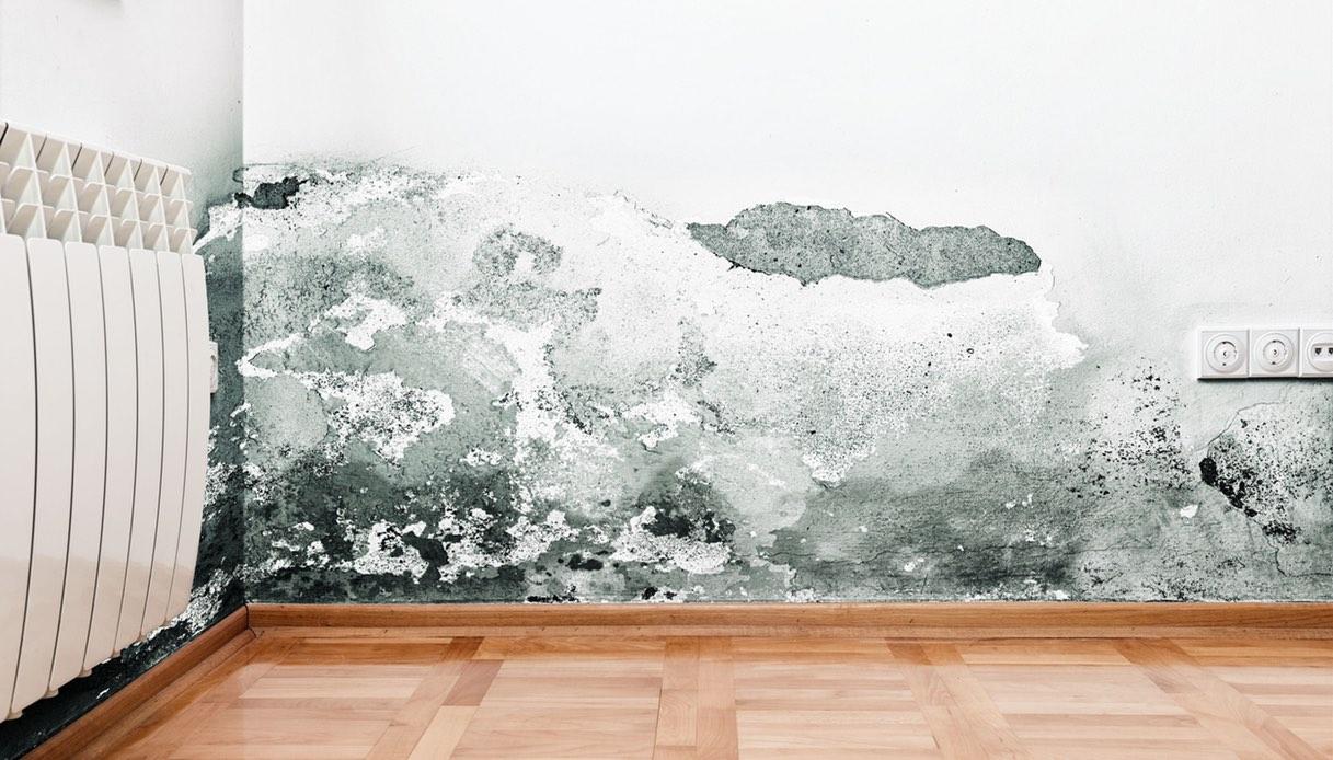 Umidita Di Risalita Come Risolvere come eliminare l'umidità di risalita dai muri