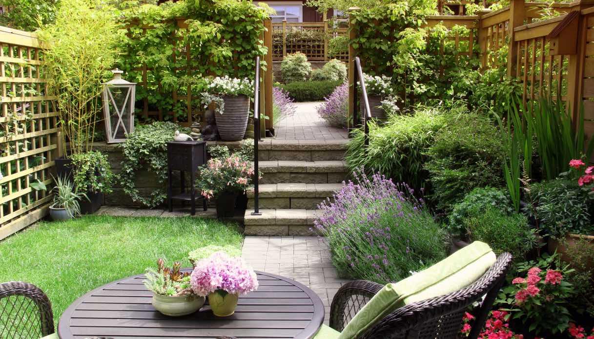Pianta Foglie Rosse E Verdi alberi e le siepi adatti a un giardino piccolo