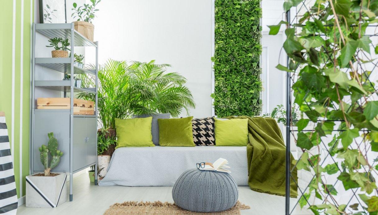 Pareti Verdi Verticali Costi giardino verticale: quali piante scegliere