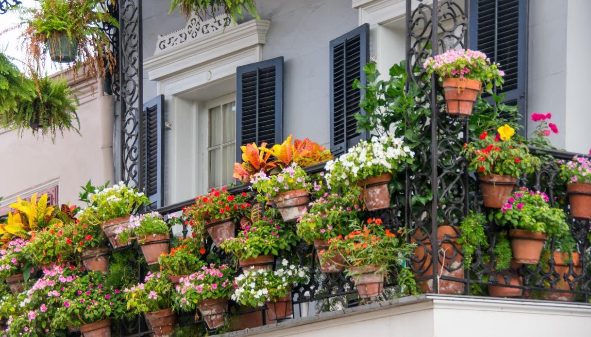 Sistemare Giardino Di Casa come realizzare un bel giardino sul balcone
