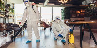 Pest control: come funziona?
