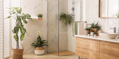 Varietà di piante perfette da tenere in bagno