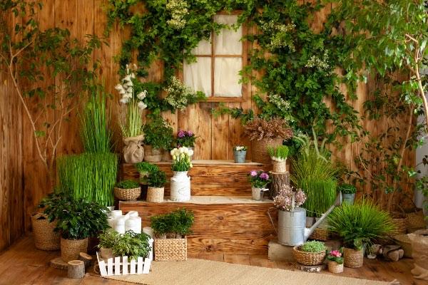 Scopri come arredare la veranda in stile Jungalow