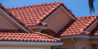 """""""Sento camminare sul tetto"""": cosa potrebbe essere?"""