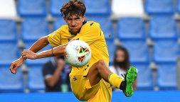 Andrea Gresele, il talento dell'Hellas Verona