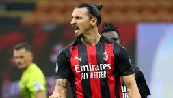 "Bufera su Ibrahimovic, l'accusa degli animalisti: ""Codardo"""