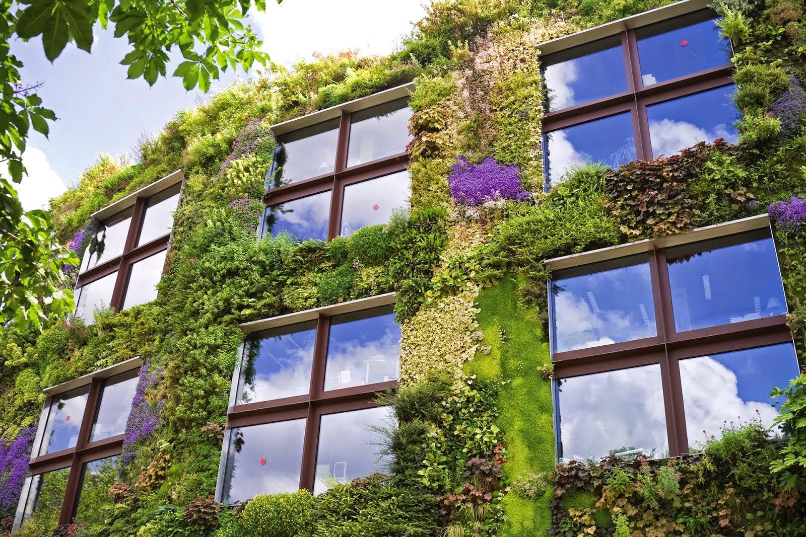Giardini Verticali Fai Da Te idee per creare giardini verticali suggestivi e belli | supereva
