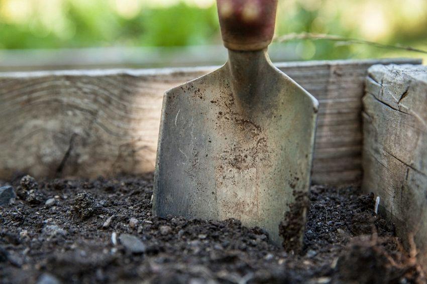 Gli attrezzi da giardino che non devono mai mancare