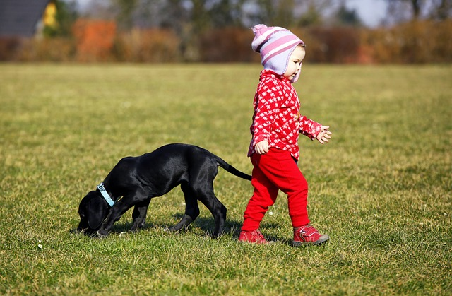 Consigli per scegliere l'animale più adatto ai bambini