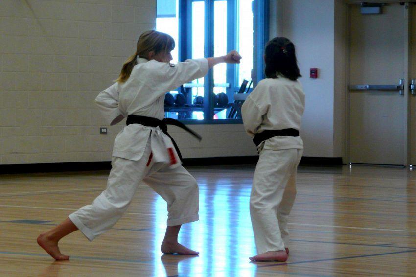 Che differenza c'è tra judo e karate in tema di arti marziali