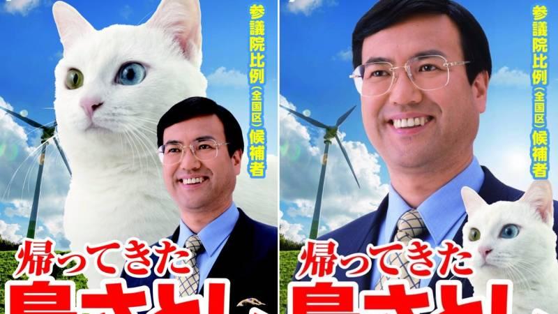 Il politico giapponese presenta il suo gatto in campagna elettorale