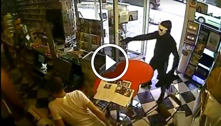 L'incredibile video del cane che si traveste da eroe e sventa una rapina