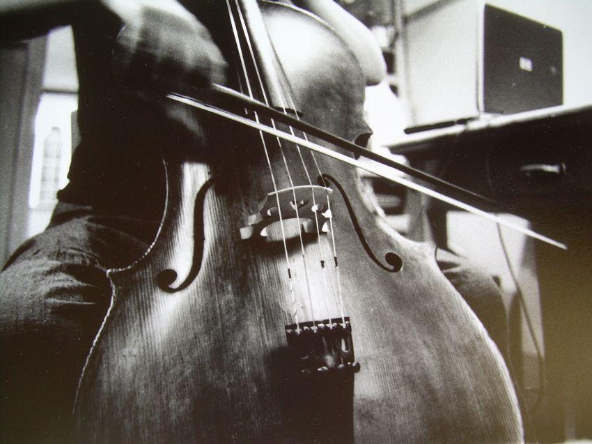 Cercasi violoncellista nuda per matrimonio