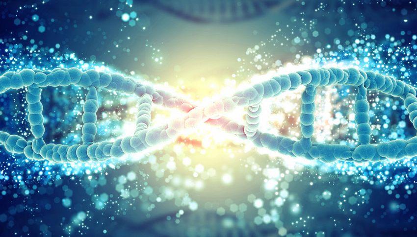 Scienziati provano a modificare il DNA di un paziente