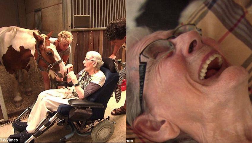 Malata di Parkinson corona il sogno di tornare a cavalcare