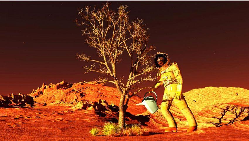 Cosa si coltiverà su Marte: anche grazie a feci e urine