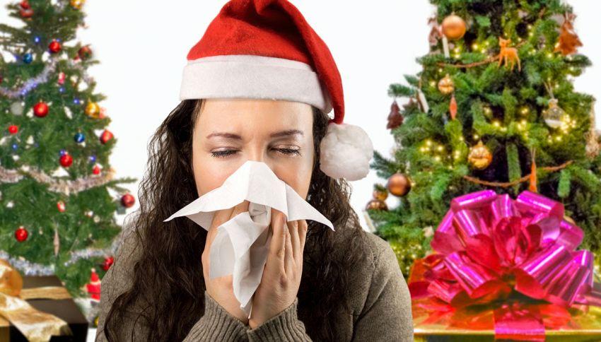 Fare l'albero di Natale può causare allergie. Lo dice la scienza
