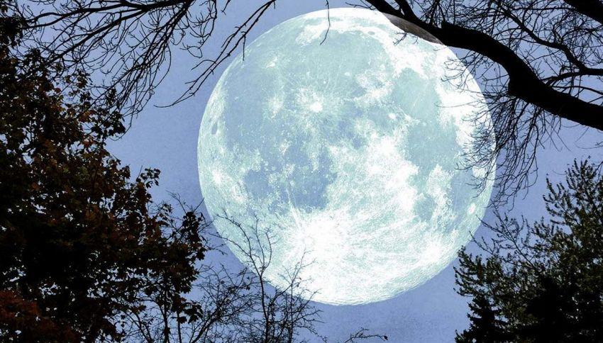 Se vi siete persi la Superluna c'è una buona notizia per voi