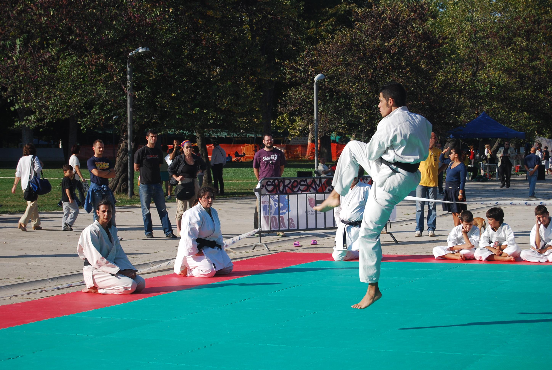 Judo boy puzzle a bovisio masciago kijiji annunci di ebay