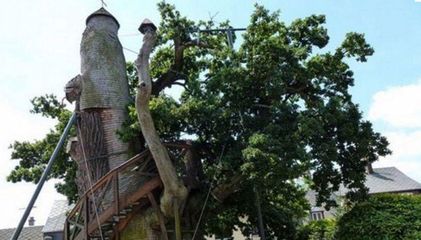 Chêne chapelle: in Francia la chiesa costruita nel tronco di una quercia