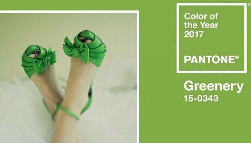 Greenery è colore del 2017. Parola di Pantone