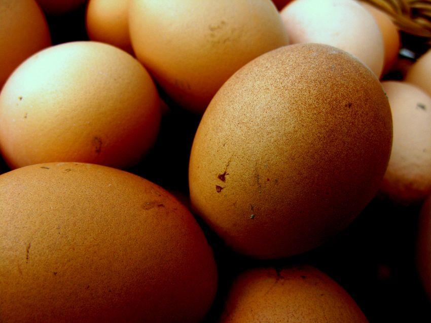 Come fare un uovo sodo