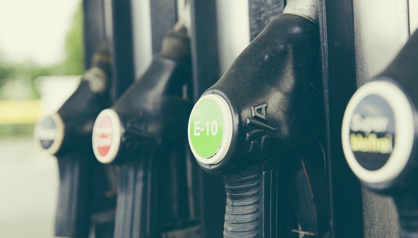 Dal lievito OGM al biodiesel il passo è breve