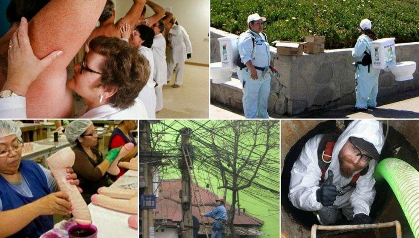 Dalle annusatrici al bersaglio umano: i peggiori lavori al mondo