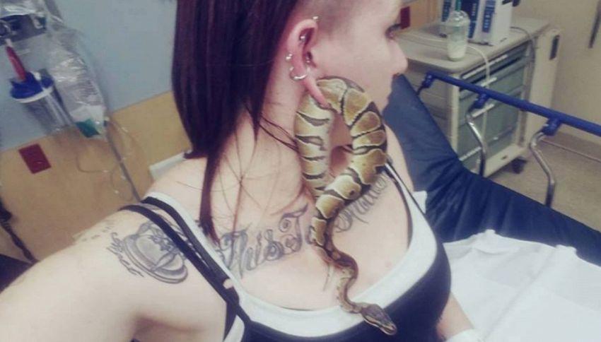 Un serpente nell'orecchio: amante dei selfie al pronto soccorso