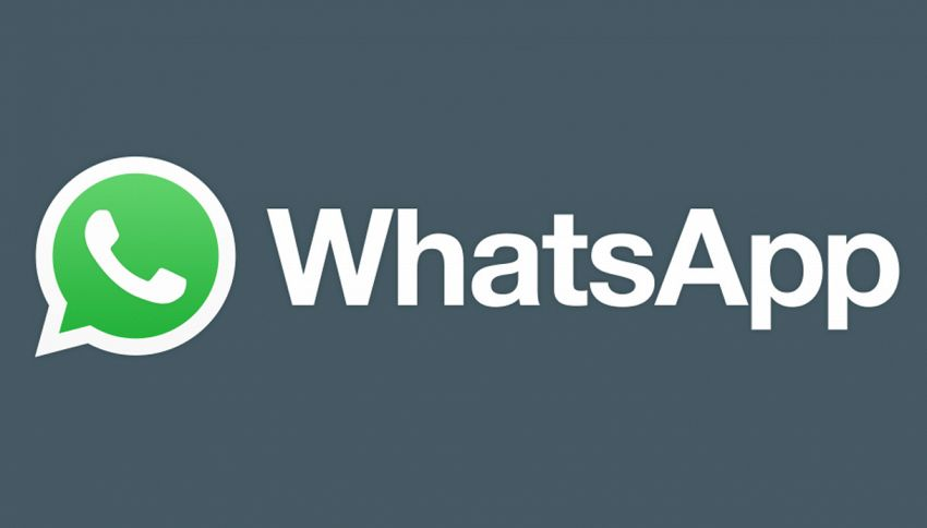 WhatsApp: arriva la novità 'anti-tradimento'