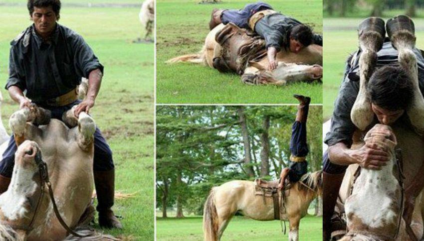 L'uomo che sussurra ai cavalli esiste davvero e li bacia pure