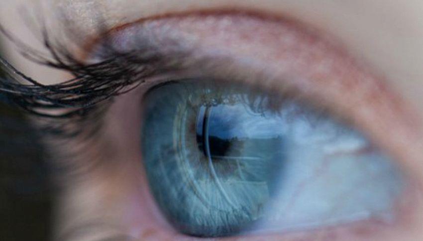 Retina artificiale: sperimentazione sull'uomo entro il 2017