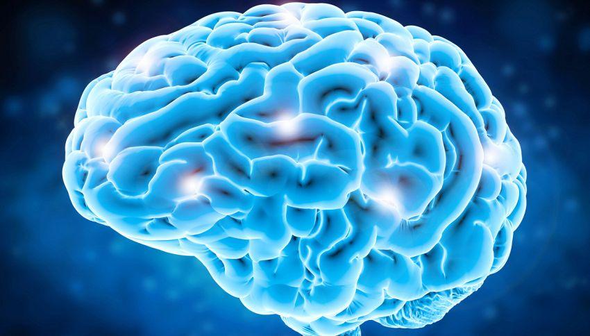 Ecco come il cervello nasconde i brutti ricordi