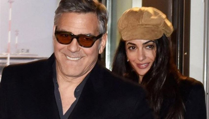 George e Amal Clooney, 10mila dollari per salvare nove cuccioli