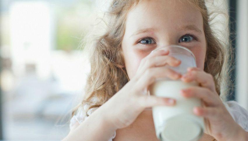 World Milk Day: bugie e verità sul latte