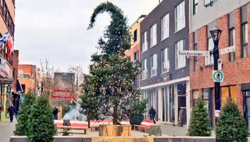 Ecco l'albero di Natale più brutto al mondo