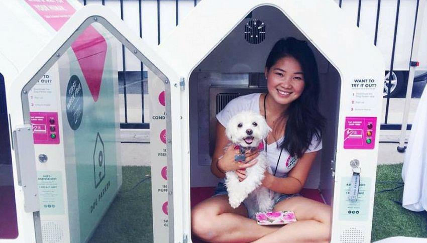 Dog Parker, il parcheggio per cani se vuoi fare shopping