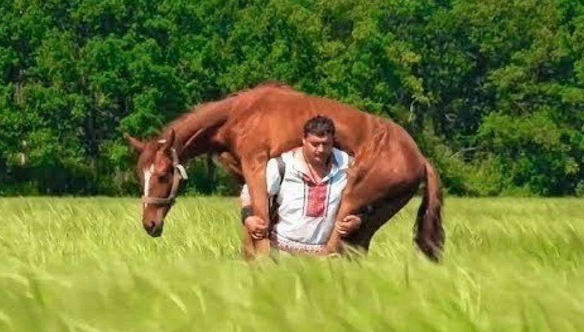L'uomo più forte del mondo: si carica un cavallo sulle spalle