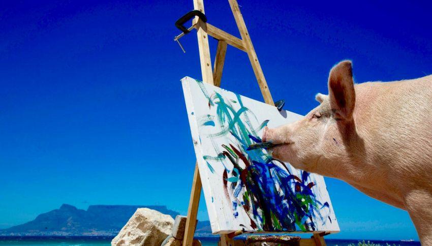 Ecco a voi Pigcasso, il maiale pittore