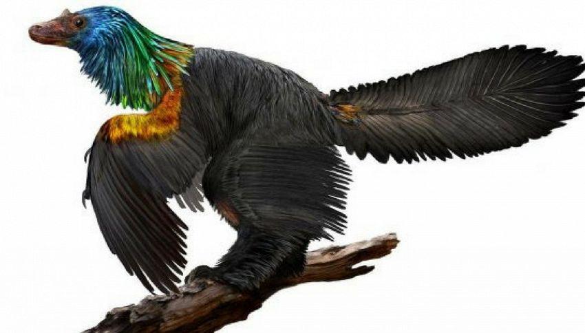 Scoperto un dinosauro arcobaleno
